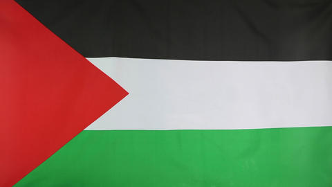 Flag of Palestine in slow motion Footage