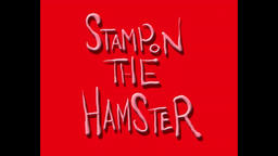 Stampon the Hamster: love Stock Video Footage