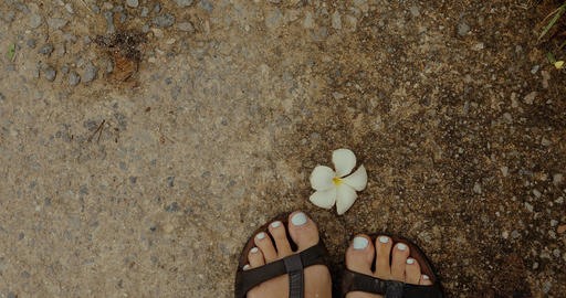 Crop feet standing near cute flower Footage