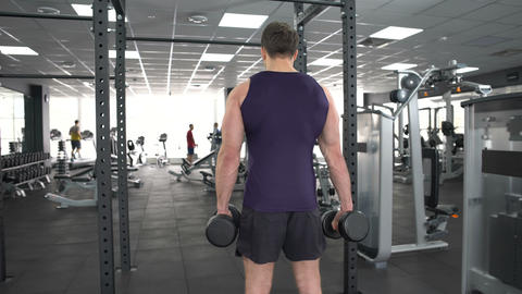Male bodybuilder lifting dumbbells in gym, sport exercises for health, back view Footage
