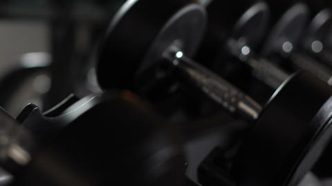 Stand with dumbbells in gym, new sports equipment, active healthy lifestyle Live Action