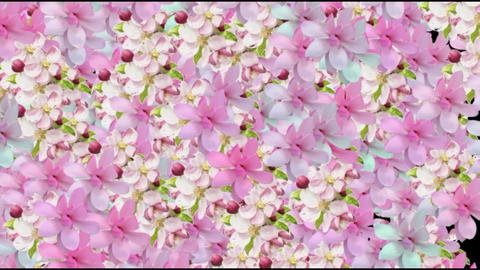 4K FLORAL BACKGROUND 2