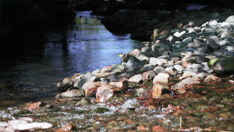 Fresh Water Gently Flowing Over Rocks into a Stream Live Action