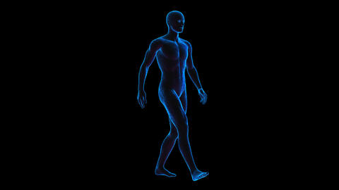 Geometric laser human figure walking isolated with alpha channel. Seamless neon Animation