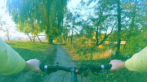 Biking on a narrow path in forest thickets 영상물