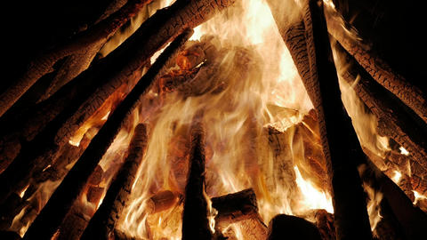 Campfire In The Night. Burning logs in orange flames close up Footage