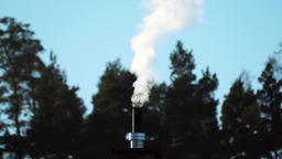 Smoking chimney by forest, real time Archivo