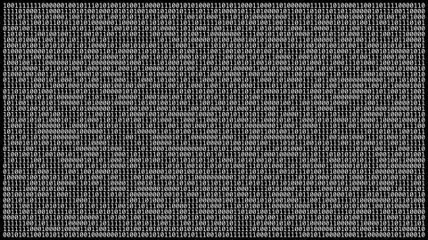 Loopable: Binary Code Wall Footage