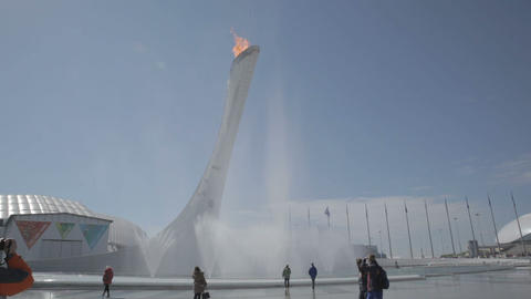 Olympic torch at the World Winter Olympic Games XXII Footage