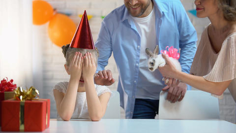 Caring parents making surprise to little daughter presenting small cute bunny Footage