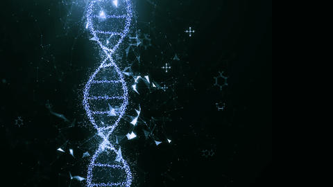 DNA 6 Animation