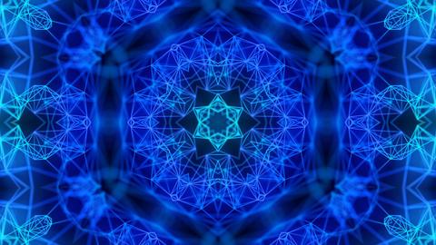 Beautiful Floral Kaleidoscope Loop Background Animation
