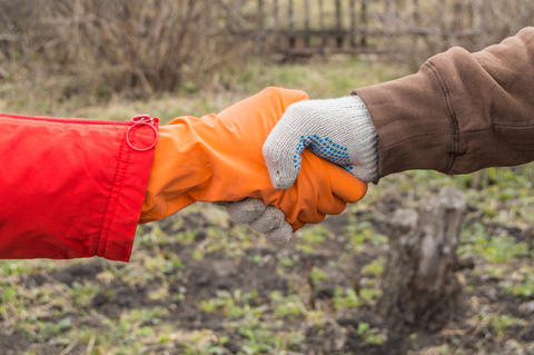 Two young farmers shake hands on the background of the soil in the spring, the フォト