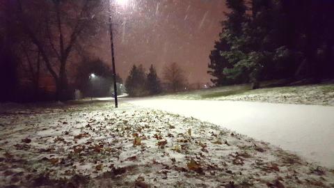 Snowing 01 0