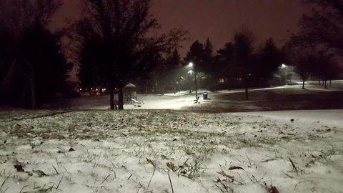 Snowy Park At Night 1