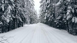 The camera flies on a winter forest road in the cold winter by car. The view Footage