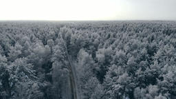 Winter season snowy mountain forest aerial shot Breathtaking natural landscape Footage