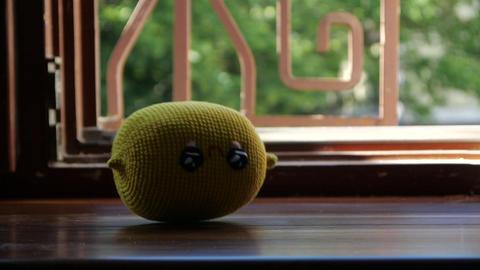 Toy Lemon falling on the wooden window sill - slow motion 영상물