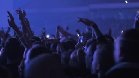 Dancing audience at the concert Live Action