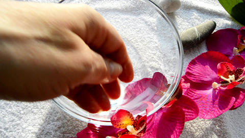 Female hand preparing water for a Spa manicure, a glass bowl of water, an Orchid Footage