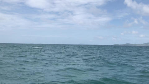 Sailing to the Island 2, Live Action