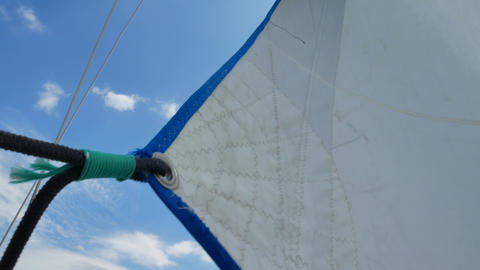 Sails of the sailing yacht in the wind day Footage
