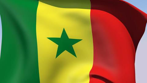 Flag of Senegal Stock Video Footage