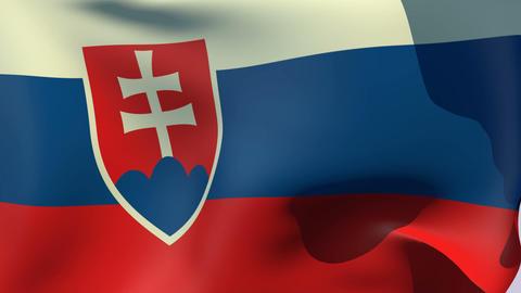 Flag of Slovakia Stock Video Footage