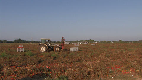 Tractor And Workers On A Field stock footage