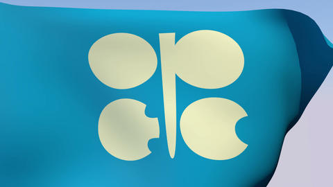 Flag of the Organization of the Petroleum Exporting... Stock Video Footage