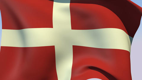 Flag of the Sovereign Military Order of Malta Animation