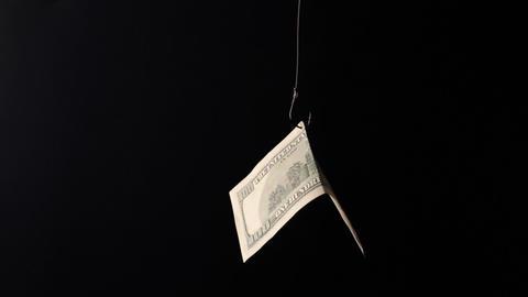 Dollars on fishing hook Stock Video Footage