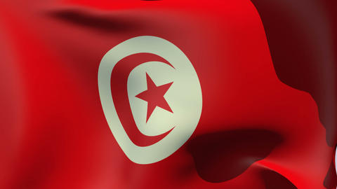 Flag of Tunisia Stock Video Footage