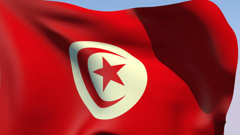 Flag of Tunisia Stock Video Footage