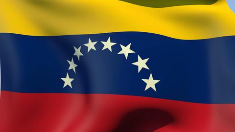 Flag of Venezuela Animation