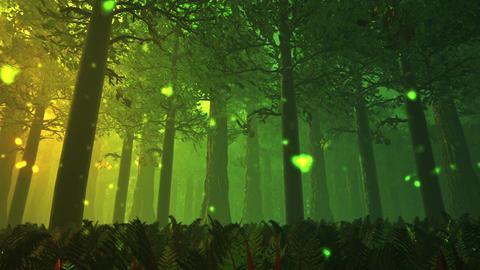 Deep Forest Fairy Tale Scene Fireflies 3D render Stock Video Footage