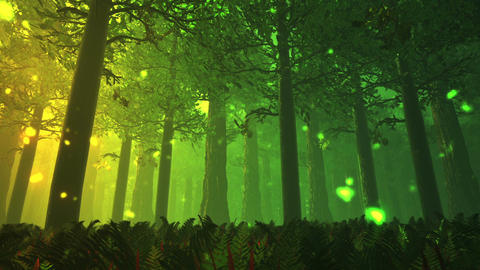 Deep Forest Fairy Tale Scene Fireflies 3D render Stock Video Footage