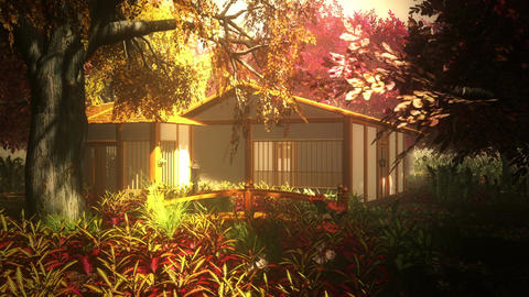 Japanese Garden and House 1 Stock Video Footage