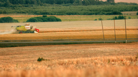 Harvesting Landscape stock footage