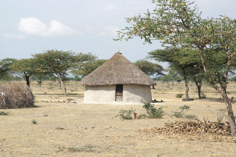 Homes, Great Rift Valley, Ethiopia, Africa Photo