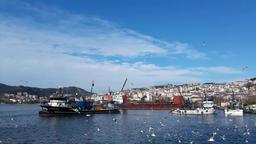 fishing boats and seagulls Archivo
