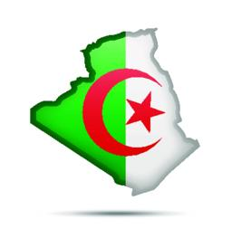 Algeria flag and contour of the country Vector