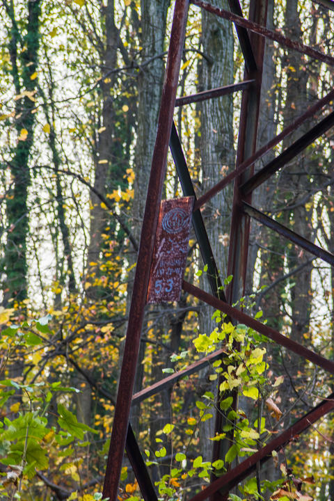 Powerline in the forest Old style steel pole rusted フォト