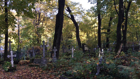 Old Tombstones in Graveyard in Autumn Footage