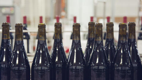Red Wine bottles on a conveyor belt in a wine bottling factory GIF