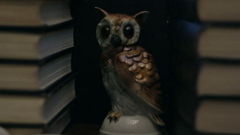 Owl figurine among the stacks of books Footage