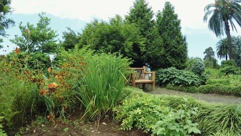 Flower beds in Botanical Garden Live Action