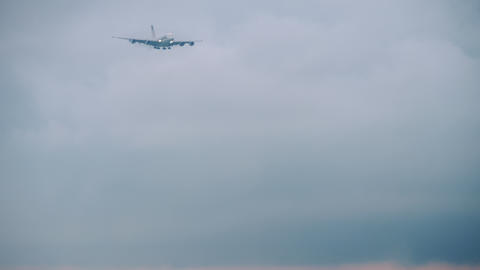 Widebody airliner approaching Live Action