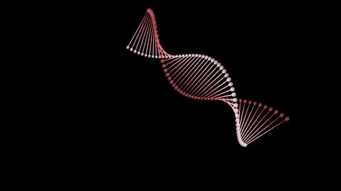 DNA string spin F After Effects Template