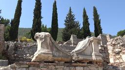 Turkey Ephesus Ephesos Efes antique Greek ruin with cypress trees GIF